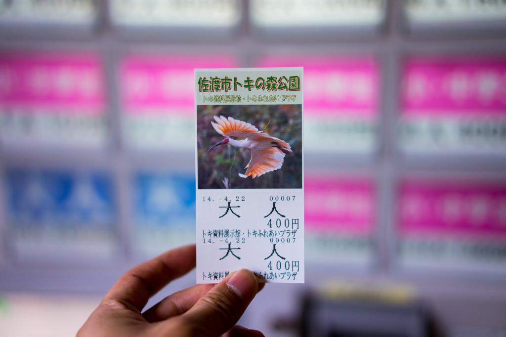トキの森公園チケット