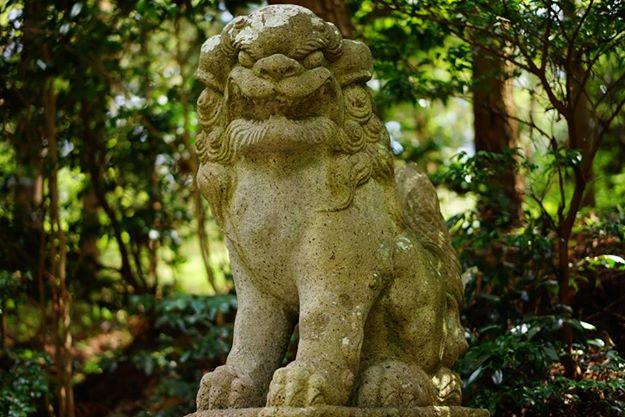 牛尾神社 狛犬