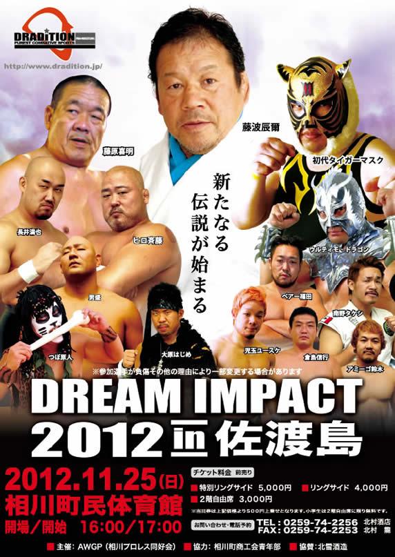 DREAM IMPACT in 佐渡島