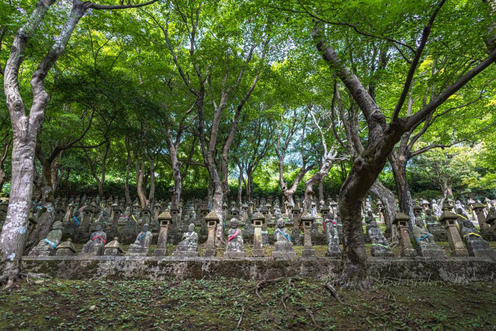 長慶寺 五百羅漢像