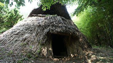 佐渡博物館 竪穴式住居の復元